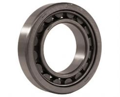 Cylindrical Single Row - NJ Style Bearings
