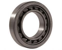 Cylindrical NJ320EMC3 Single Row - NJ Style Bearings